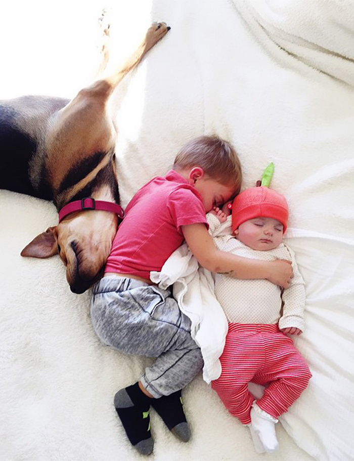 Theo, Beau And Evangeline Nap 5