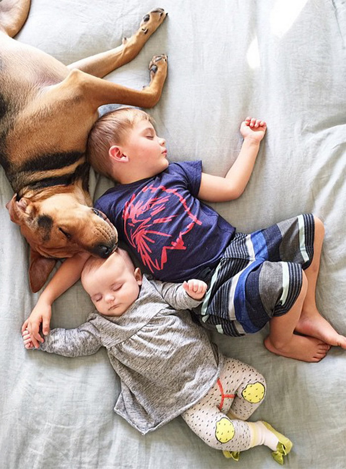 Theo, Beau And Evangeline Nap 7