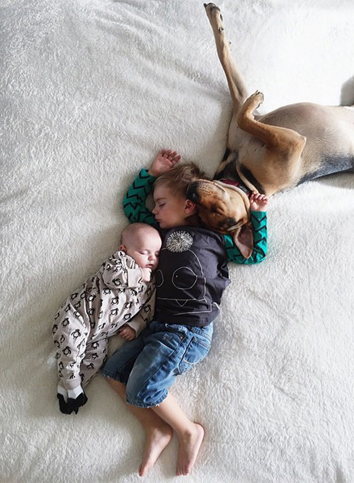 Theo, Beau And Evangeline Nap 8