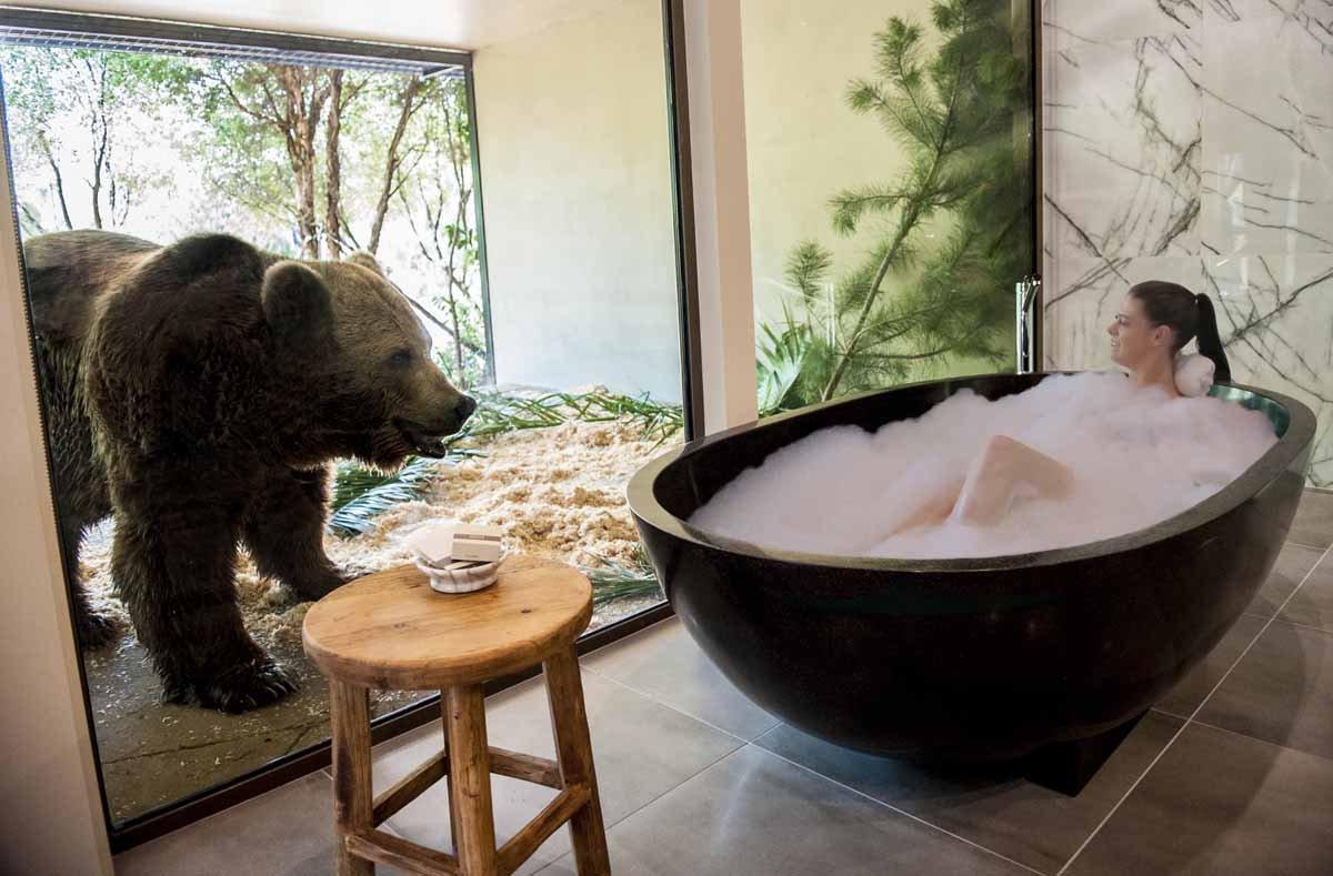 Jamala Wildlife Lodge Jungle Bungalow Bath With Bear