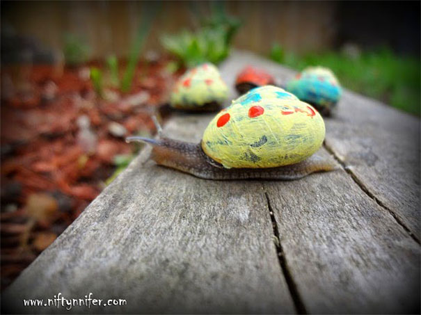Painted Snail Shell 10