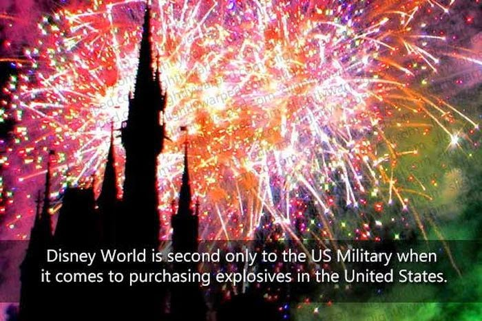 Disneyland Fact 12