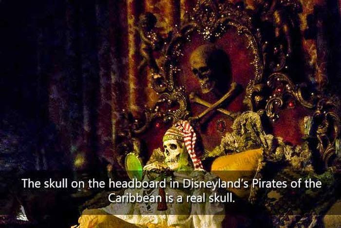 Disneyland Fact 37