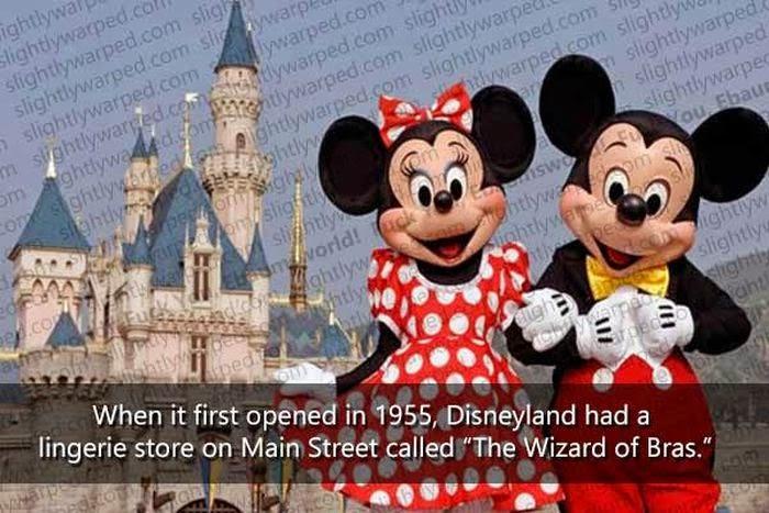 Disneyland Fact 49