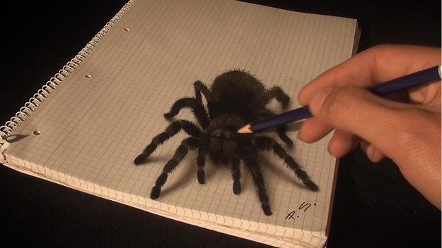 3D Drawing 5