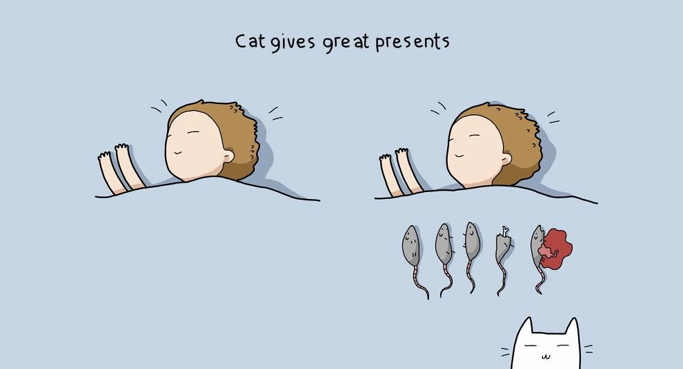 Benefits Of Having A Cat 2