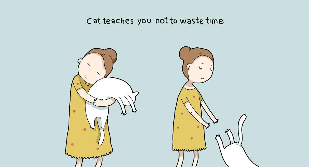 Benefits Of Having A Cat 3
