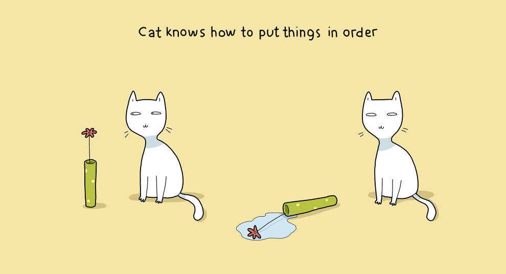 Benefits Of Having A Cat 5