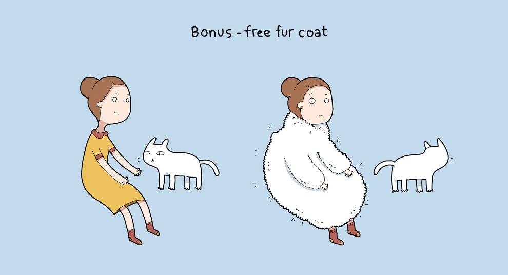 Benefits Of Having A Cat 7