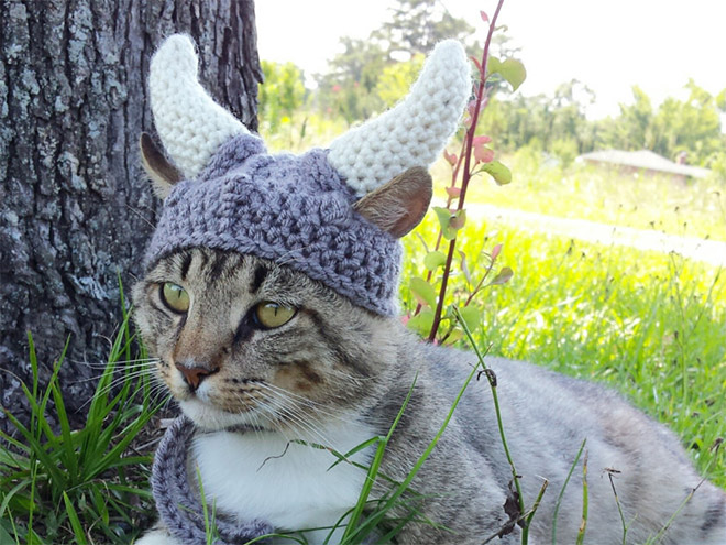 Crocheted Pet Hat 16