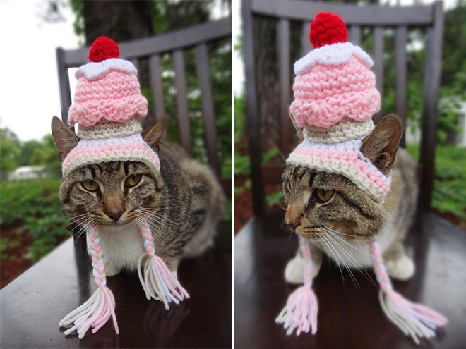 Crocheted Pet Hat 4