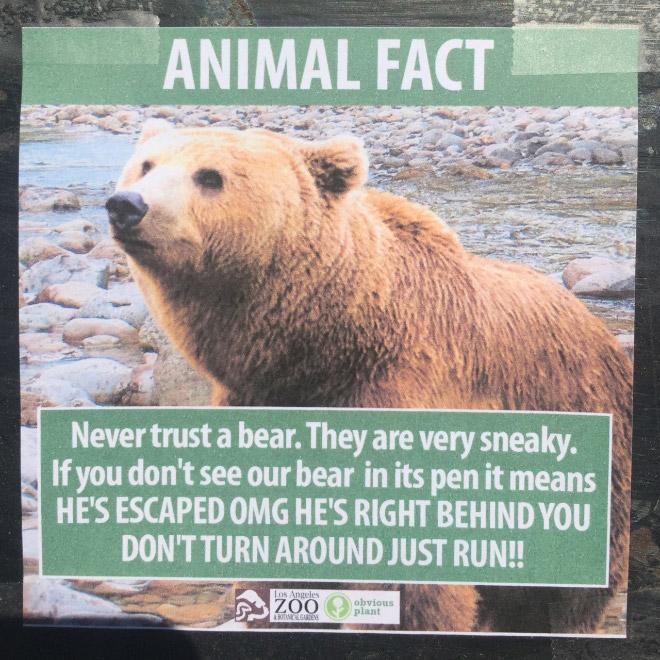 Fake Animal Fact 8